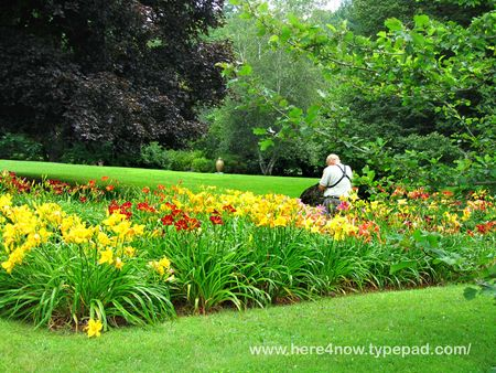 Berkshire Botanical Garden M_0109