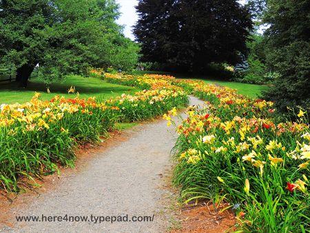 Berkshire Botanical Garden_0037