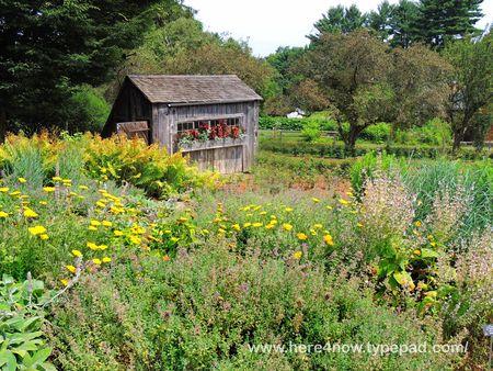 Berkshire Botanical Garden_0046