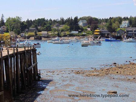 Bass Harbor_0025