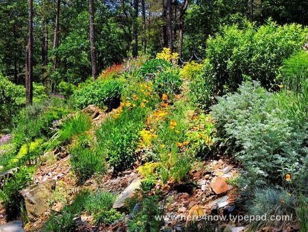Gardens at Wildwood_0020
