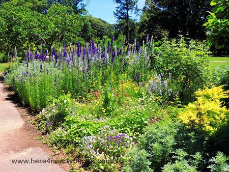 Memphis Botanical Garden_0063