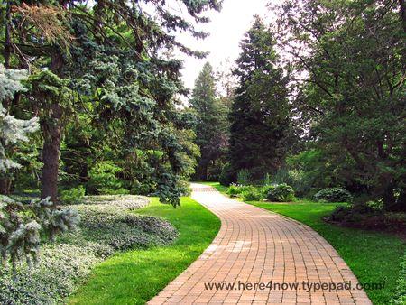 Botanical Garden M_0084