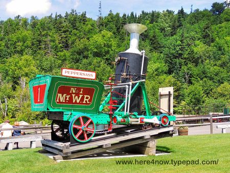 Cog Railway_0019
