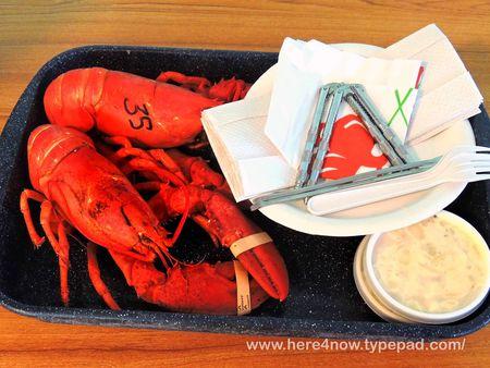Lobster_0022