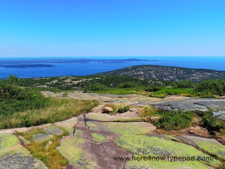 Cadillac Mountain_0035