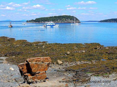 Shore Walk_0036