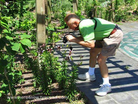 Memphis Botanical Garden M_0072