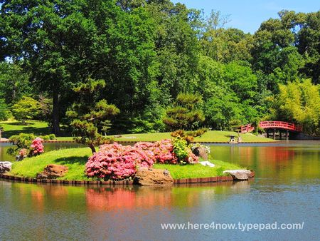 Memphis Botanical Garden_0023