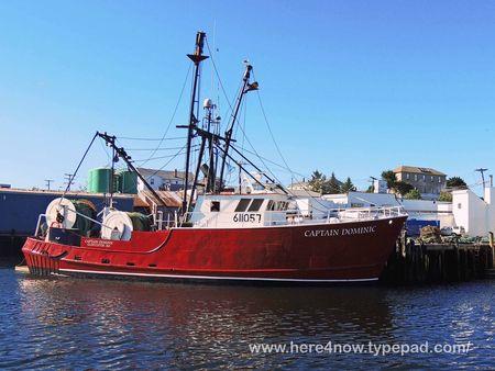 Whale Cruise_0004