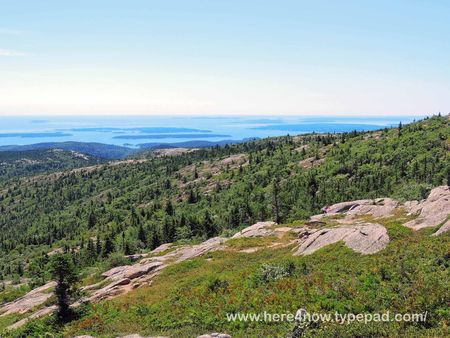 Cadillac Mountain_0038