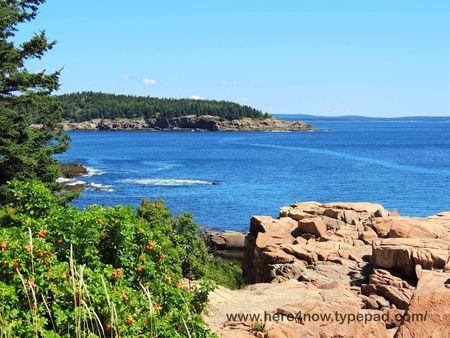 Acadia_0167