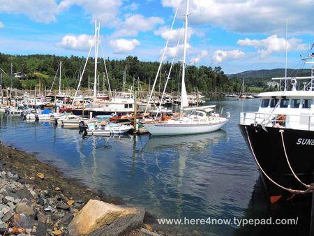 Northeast Harbor_0003