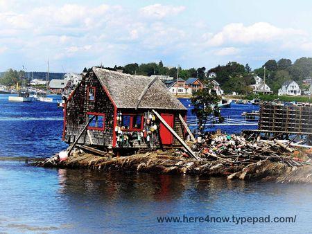 Orrs Island Vignette_0020