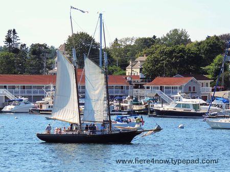 Boothbay Harbor_0092