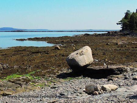 Shore Walk_0042