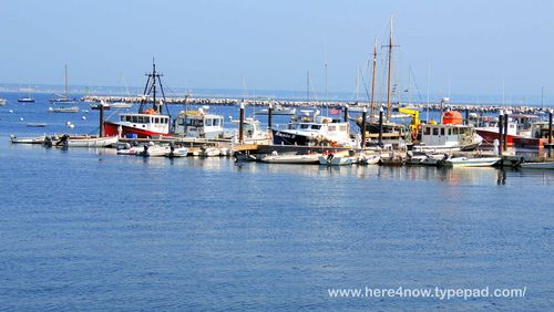 Provincetown_0043