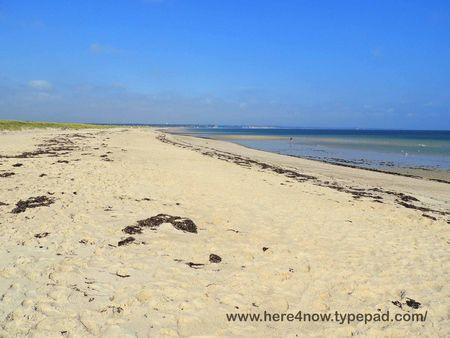 Scusset Beach_0008