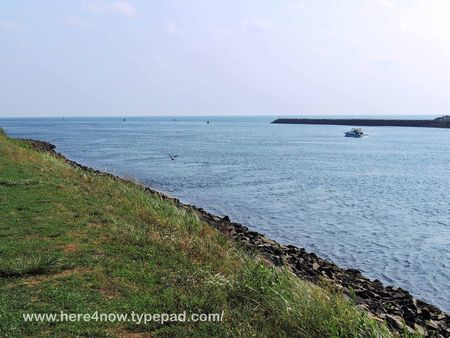 Cape Cod Canal_0004