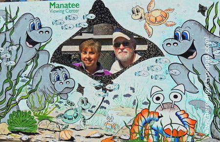 Manatees_0040