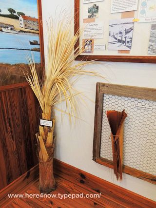 Cedar Key Museum_0053