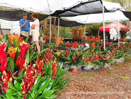 Garden Festival_0018