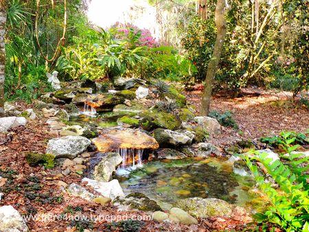 Kanapaha Bot Gardens_0040