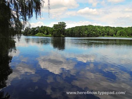Withlacoochee Trail_0008
