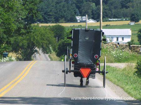 Amish Buggy_0024