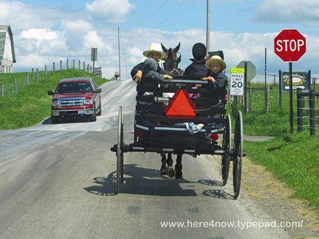 Amish Buggy_0026