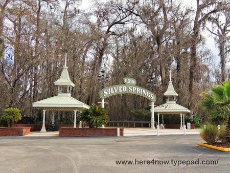 Silver Springs_0005