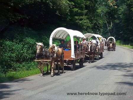 Amish Wagon Train_02