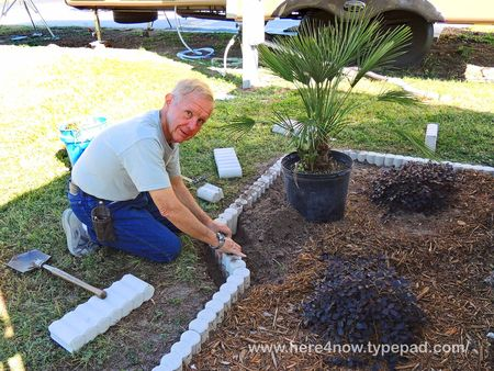 Planting Fan Palm_0025
