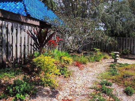 Sarasota Garden Club_0023