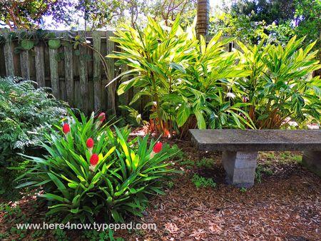Sarasota Garden Club_0026