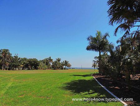 Palm Arboretum_0048