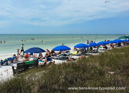 Honeymoon Island_13