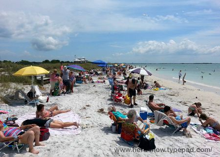 Honeymoon Island_14