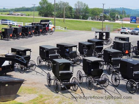 Amish Buggies_0036