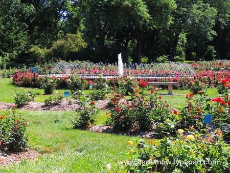 Park of Roses_0012