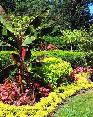 Kingwood Gardens_0019