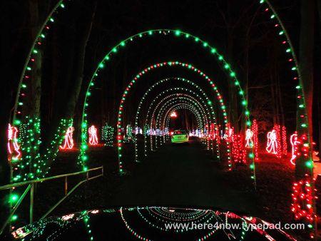 Christmas Lights_0033