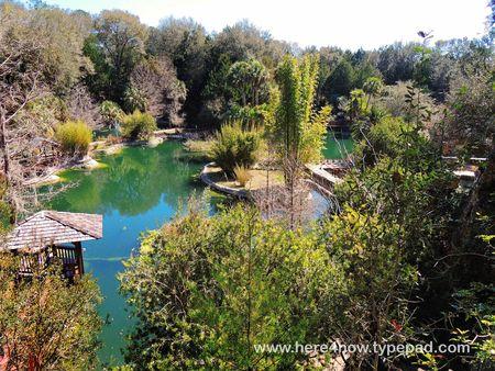 Cedar Lakes Gardens_0011