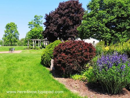 Quailcrest Gardens_0004