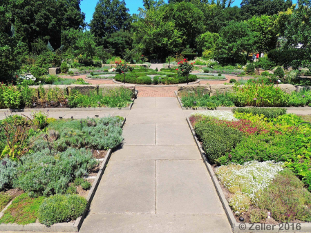 Cleveland Botanical Gardens_0035