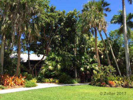 McKee Botanical Garden_P10