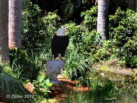 McKee Botanical Garden_iPad21