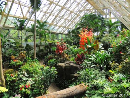 Franklin Park Conservatory_0040