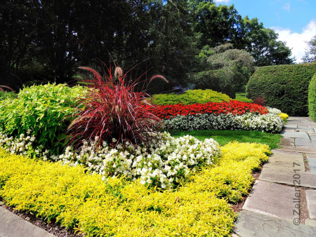 Kingwood Gardens_0027