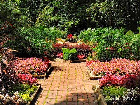 Kingwood Gardens_0046